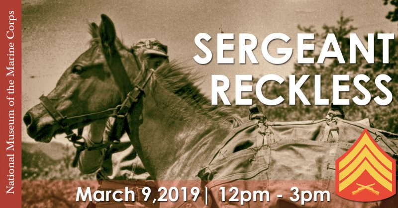 Sgt. Reckless, Natl Museum of Marine Corps