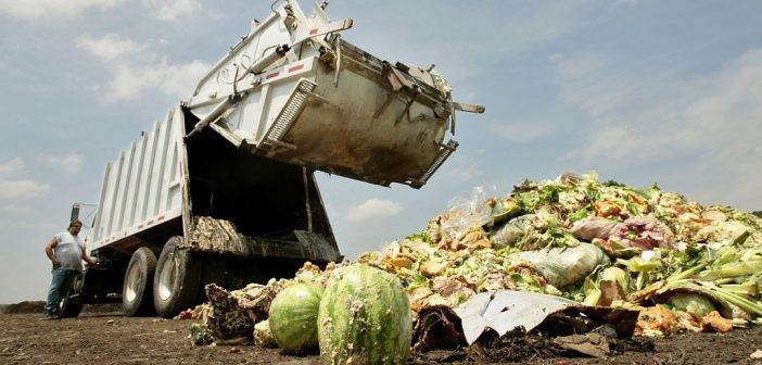 food waste, ACTS