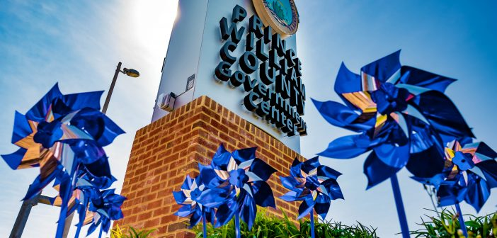 pinwheels, child abuse prevention month