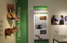 Manassas Museum, Latino exhibit, On a high note 0919