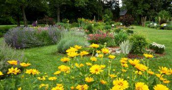 gardening, feature 0420