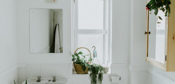 toilet, bathroom