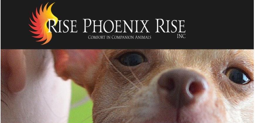 Rise Phoenix Rise Inc