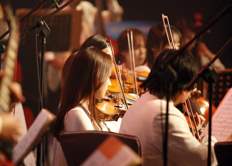 Youth Orchestras of Prince William