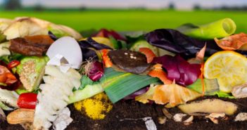 food waste recycling pwcs