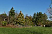 National Arboretum, John Cowgill